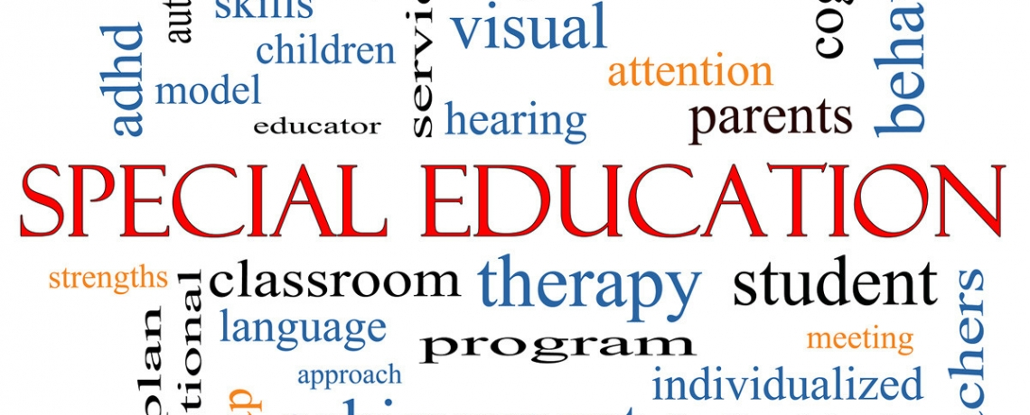 special educational needs essay